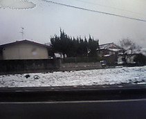 P1000132
